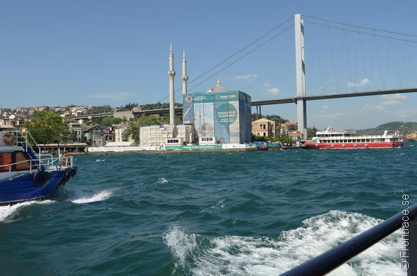 Cruise-010