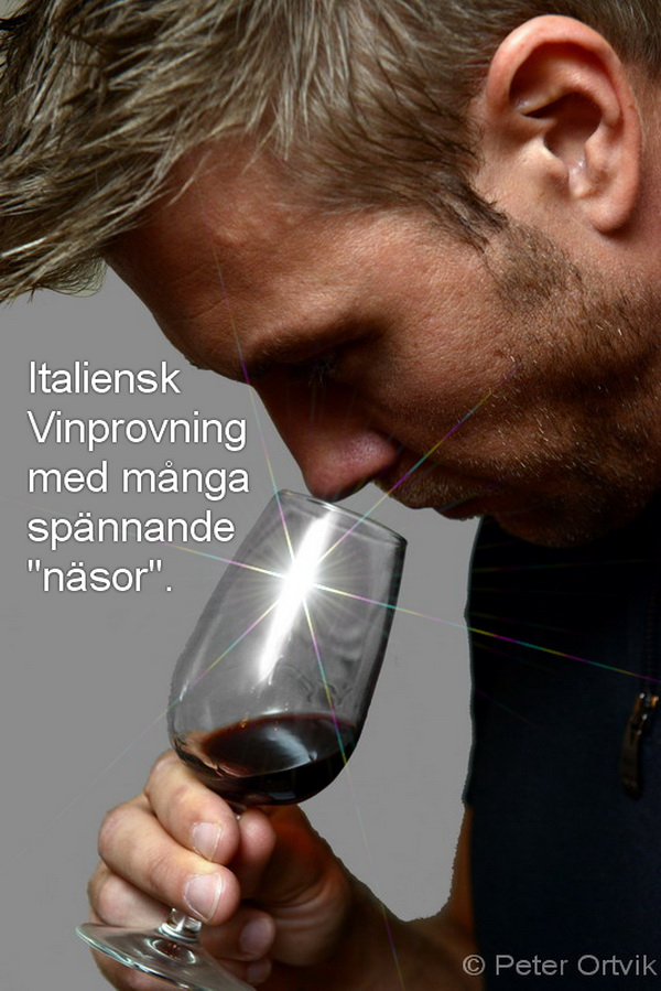wine_test